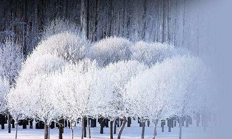 lo romántico del invierno
